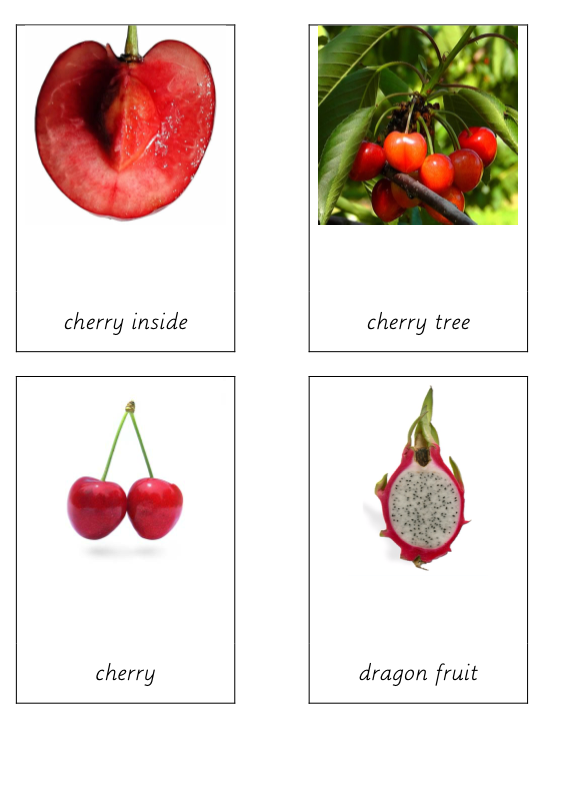 Fruit terminology cards