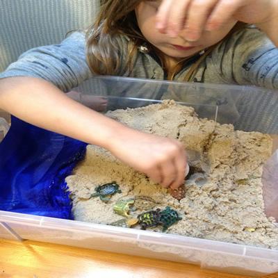 Turtle nest sand tray