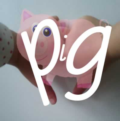 pig picture and words