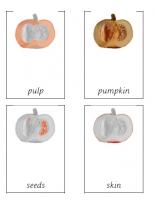 Part of a pumpkin